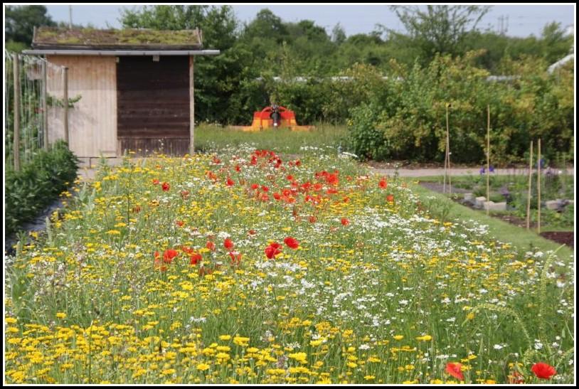 Prüfung Garten Und Landschaftsbau