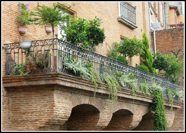 Rasen Auf Dem Balkon Pflanzen
