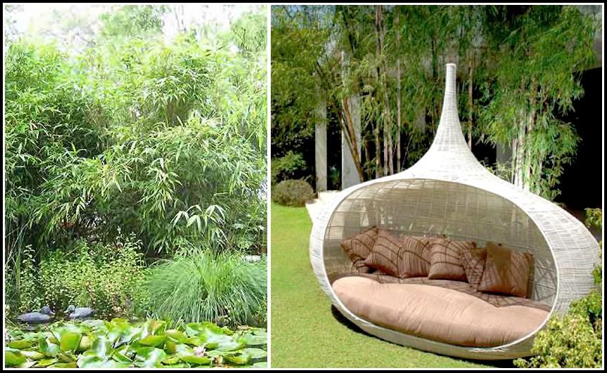 Schöner Wohnen Garten
