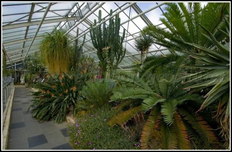 Schönster Botanischer Garten Nrw