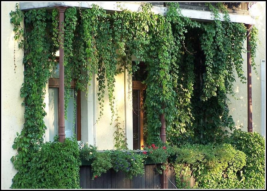 Sichtschutz Balkon Holz Weiss