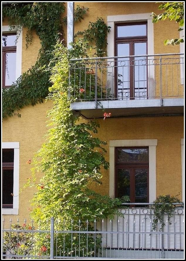 Sichtschutz Balkon Obi