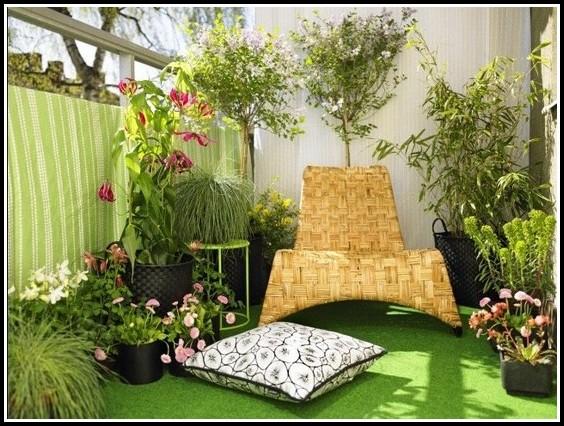 Sichtschutz Pflanzen Balkon Kübel