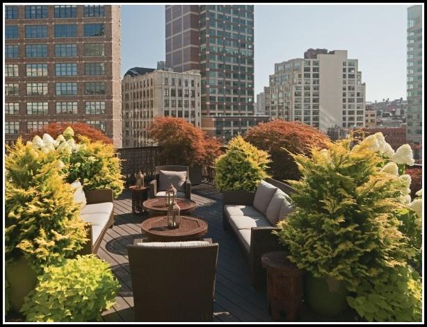 Sichtschutz Terrasse Durch Pflanzen