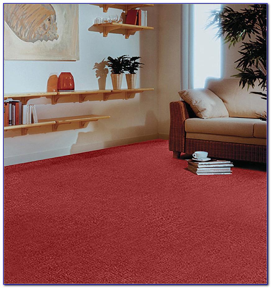 Sisal Teppichboden Reinigung