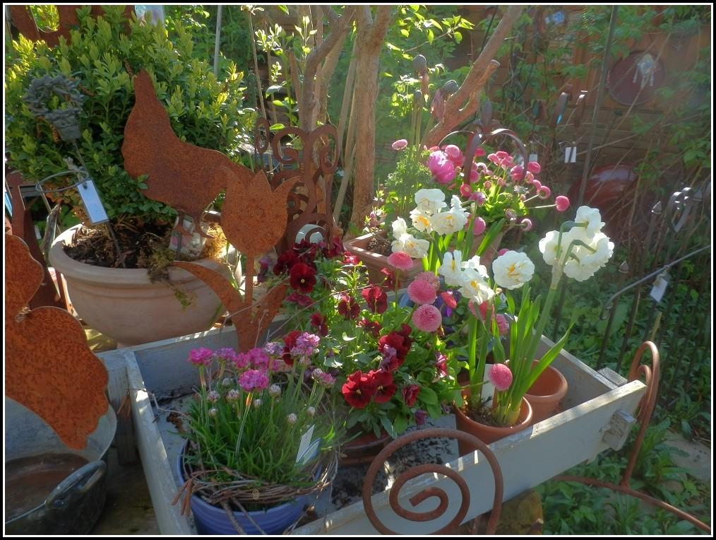 Sprüche Für Den Gartenfreund