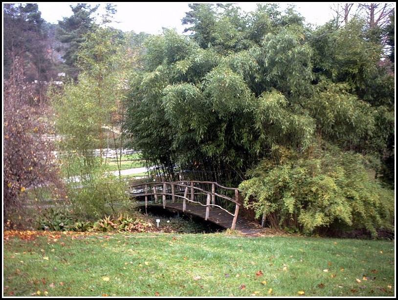 Tübingen Botanischer Garten öffnungszeiten