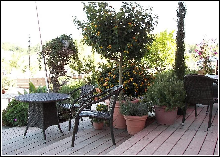 Terrasse Aus Holzpaletten