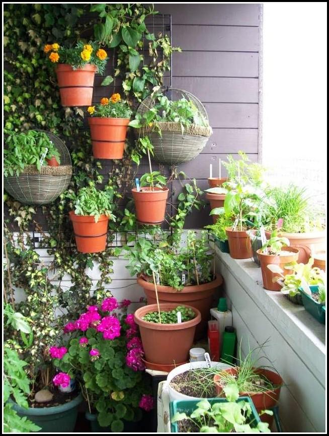Tomaten Pflanzen Auf Dem Balkon