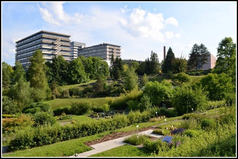Uni Tübingen Botanischer Garten
