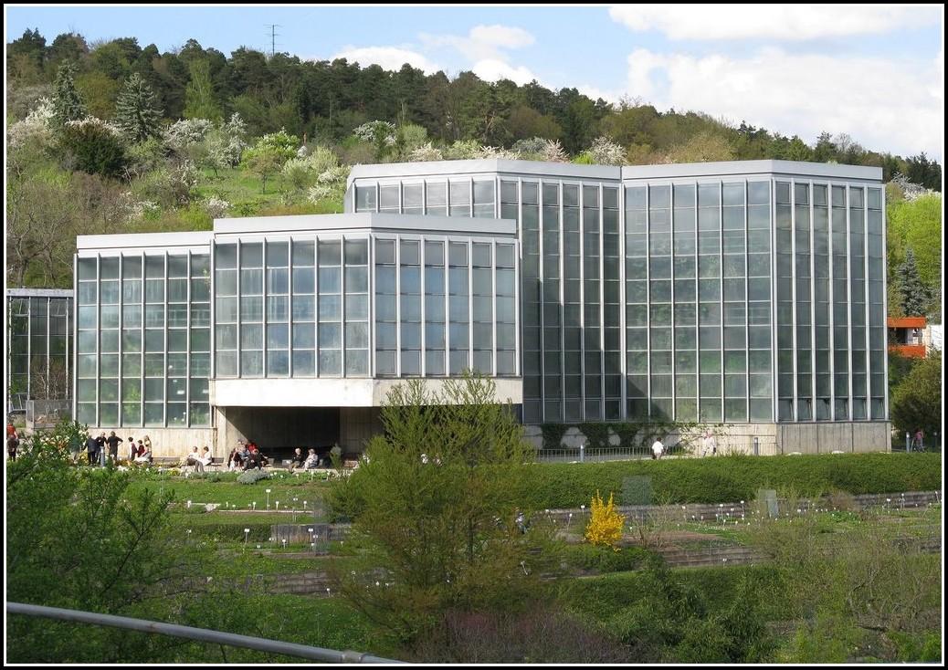 Universität Tübingen Botanischer Garten