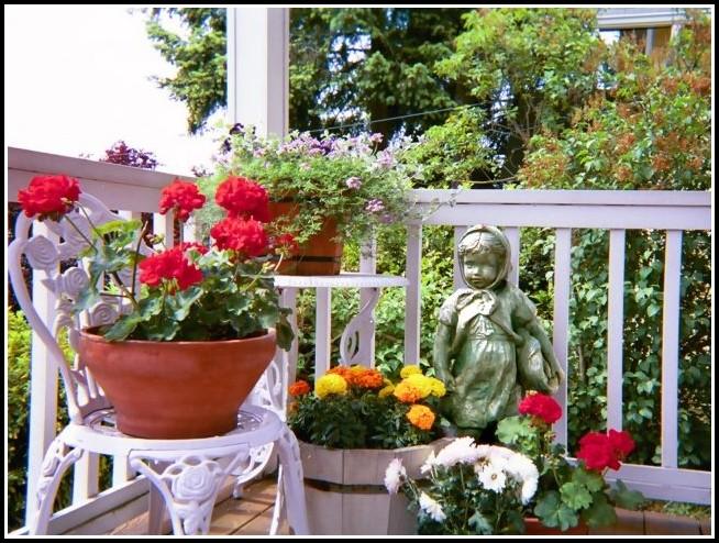 Welche Pflanzen Für Den Balkon
