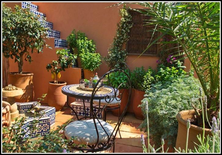 Winterharte Blühende Kübelpflanzen Für Terrasse