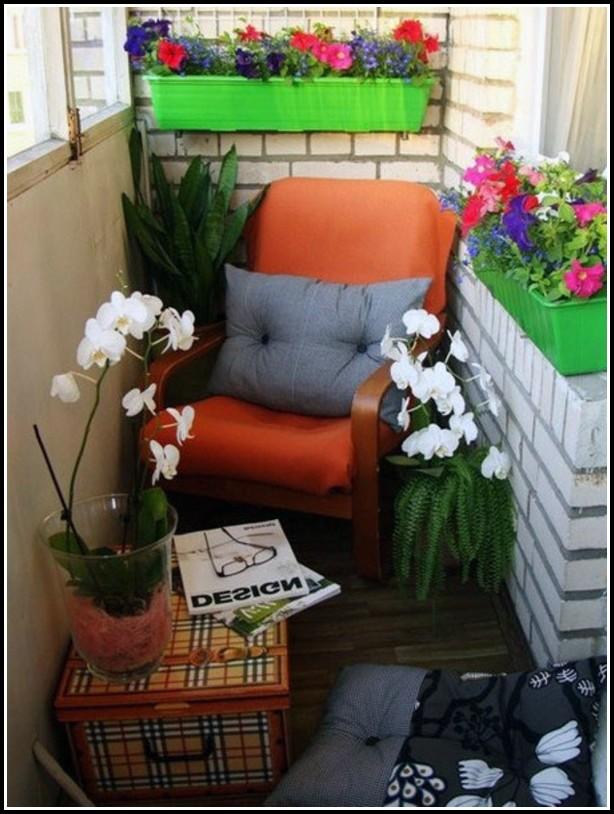 Winterharte Blumen Für Den Balkon