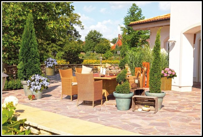 Winterharte Kübelpflanzen Für Die Terrasse