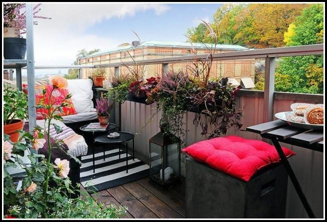 Winterharte Kübelpflanzen Für Sonnige Balkone