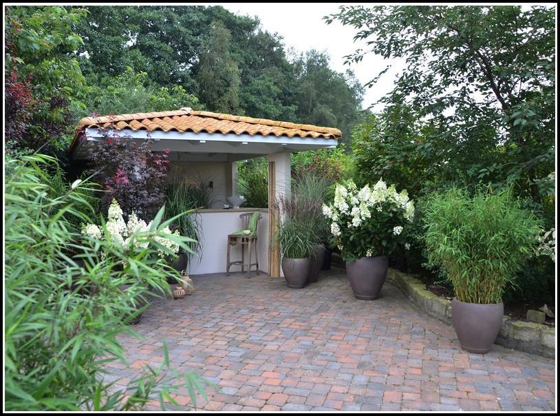 Winterharte Pflanzen Für Terrassen