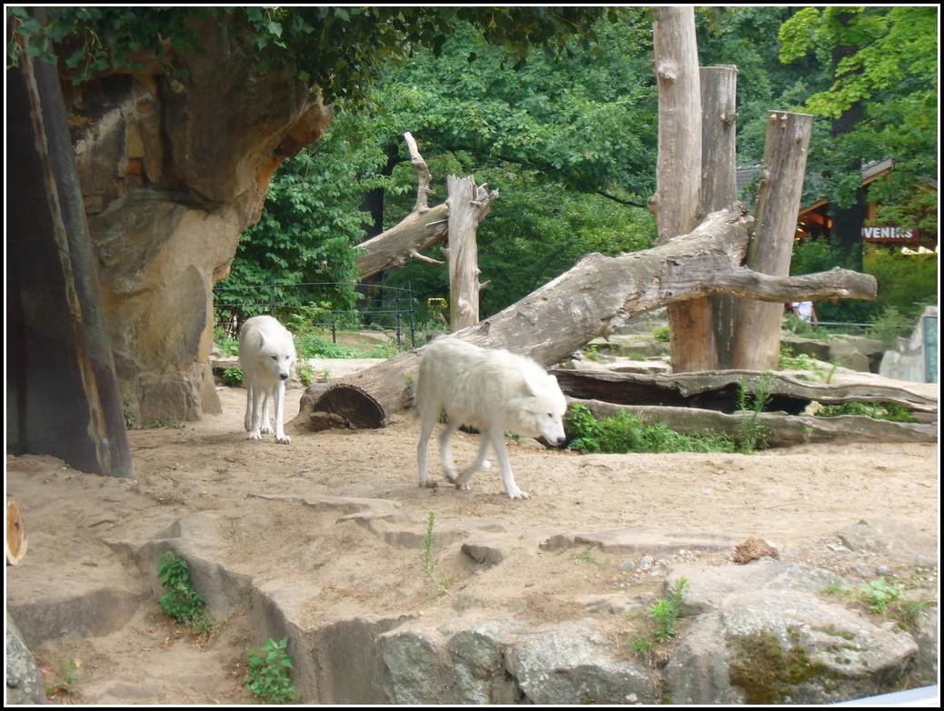 Zoologischer Garten Berlin Kino