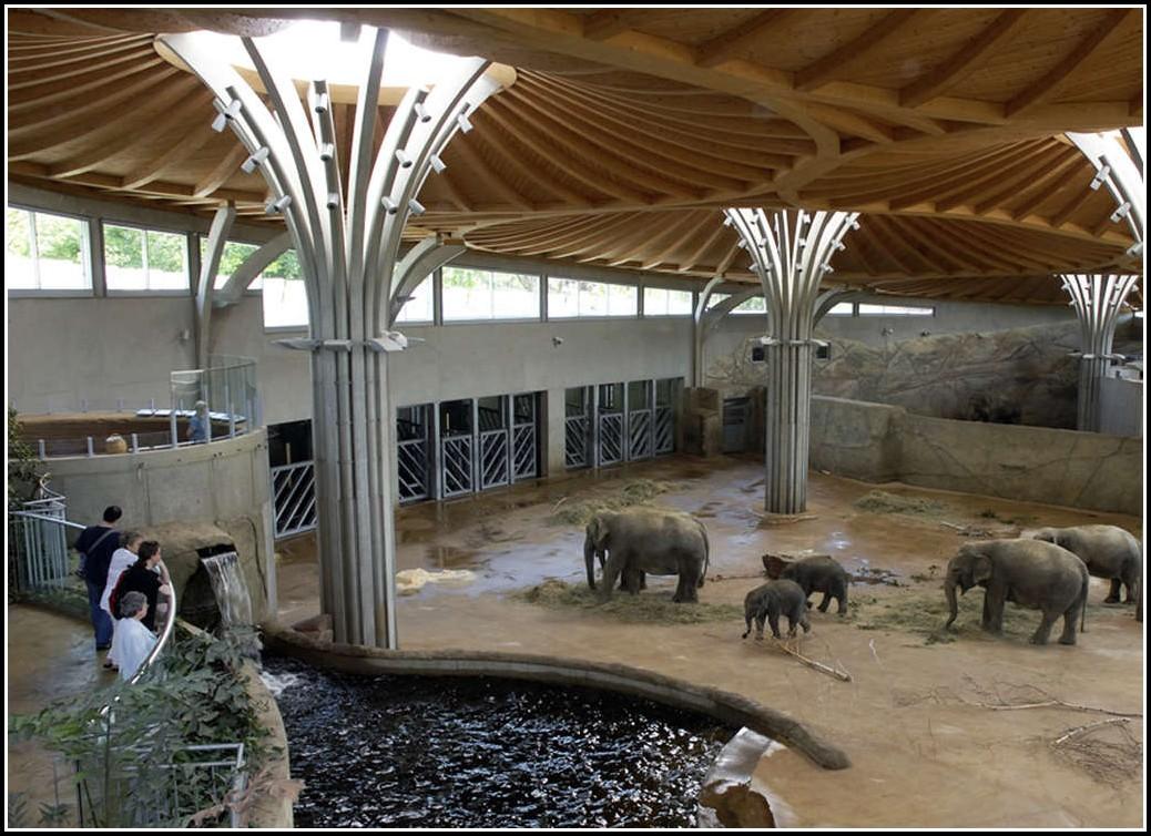 Zoologischer Garten Köln öffnungszeiten