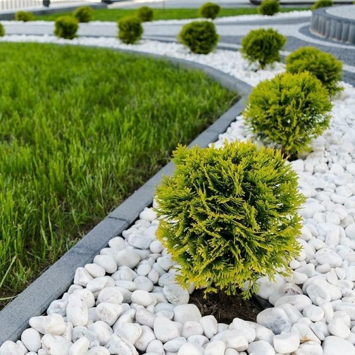 Vorgartengestaltung Vorgarten Gestalten Mit Kies Und Gräsern