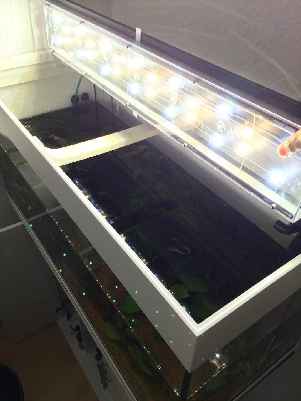 Aquarium Hängelampe Led