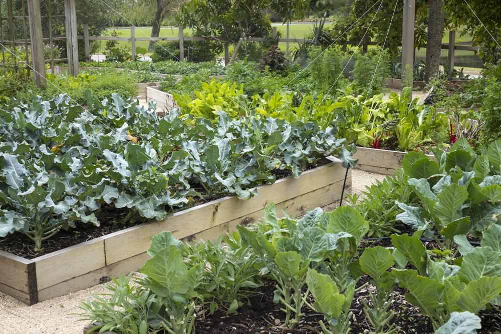 Bauerngarten Anlegen Plan