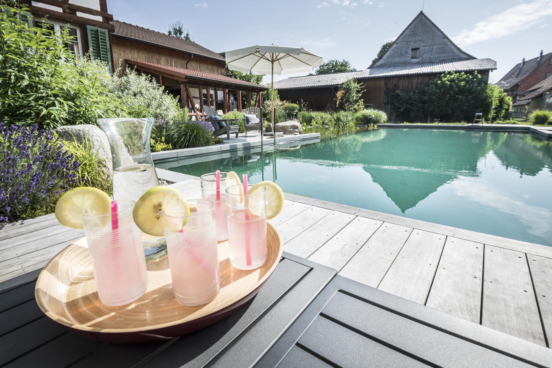 Bio Pool Kleiner Garten