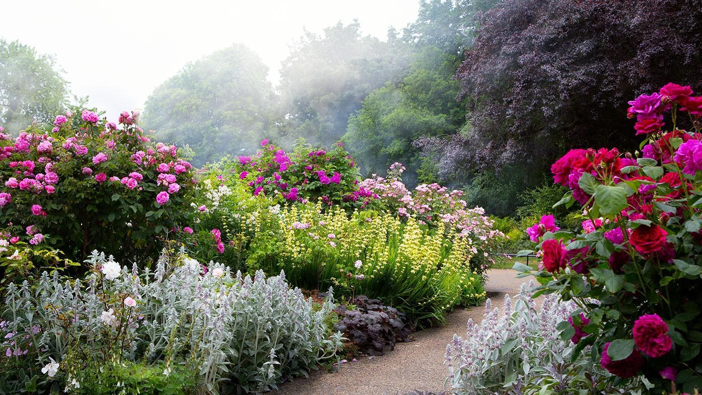 Englische Gärten Bilder