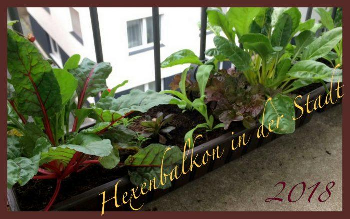 Gardena Bewässerungssystem Balkon