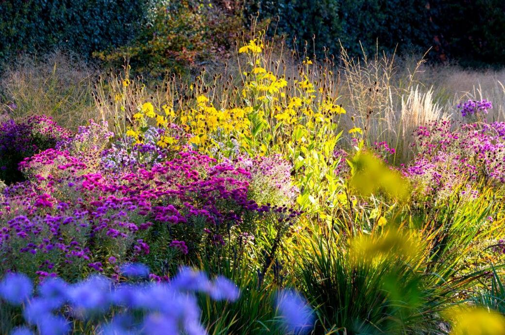 Garten Bepflanzung Im Herbst
