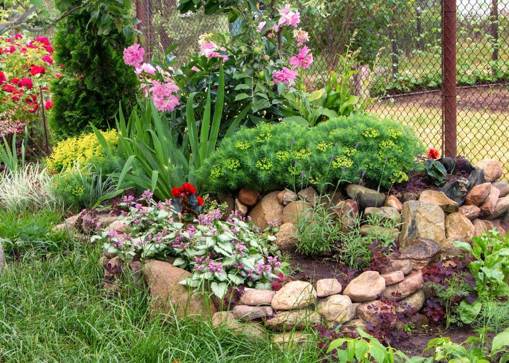 Garten Bepflanzung Mit Steinen