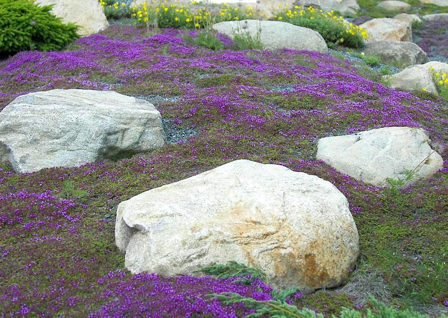 Garten Hang Mit Steinen Gestalten