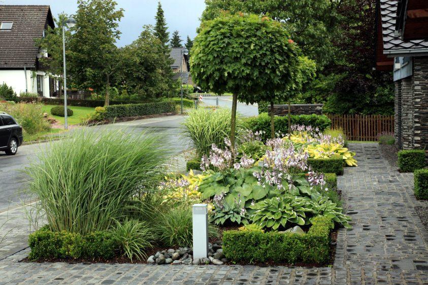 Garten Modern Gräser