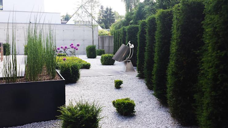 Garten Ohne Rasen Alternativen Zum Rasen