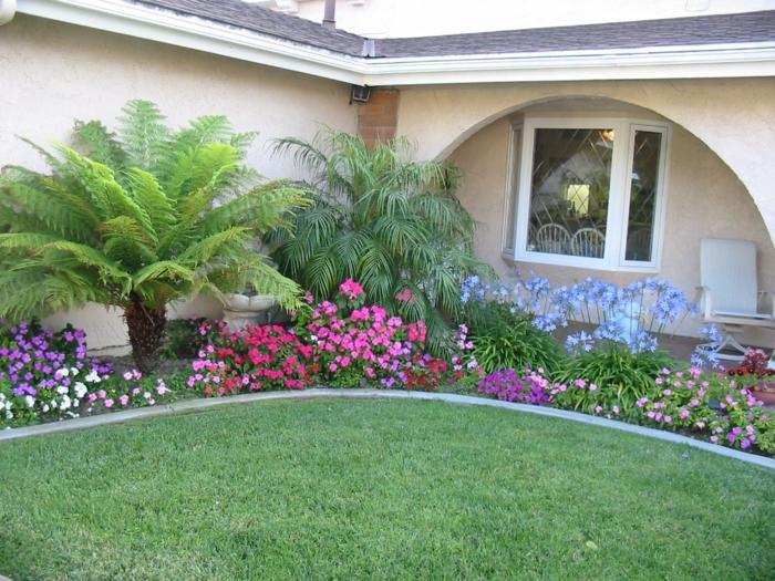 Garten Pflanzen Schatten
