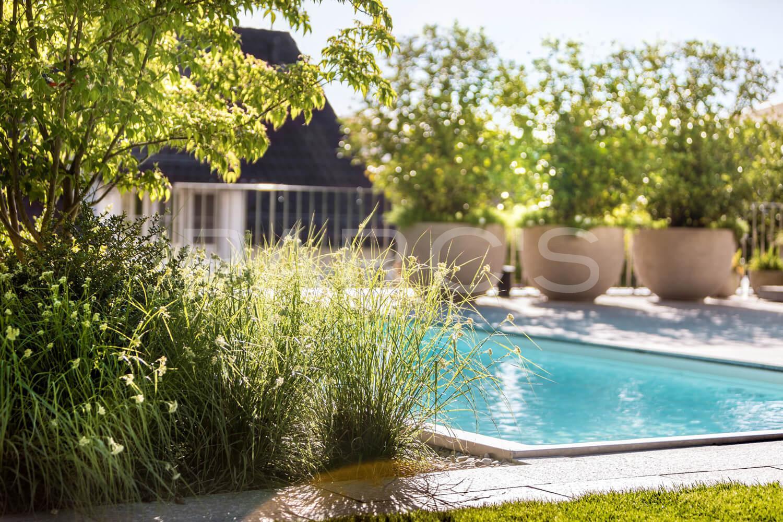 Garten Pool Gestaltung