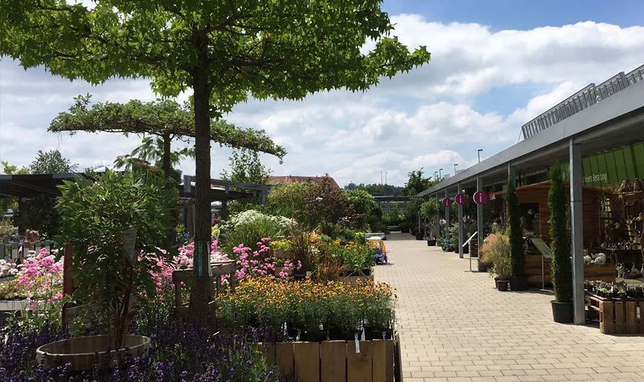 Gartencenter Meier Dürnten Online Shop