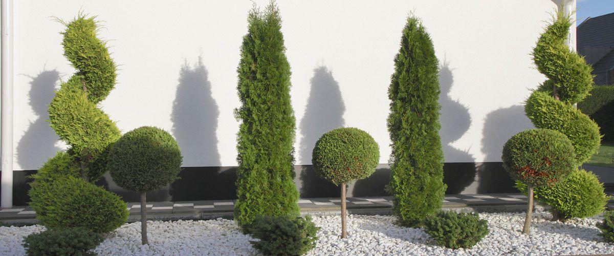 Gartengestaltung Ideen Vorgarten Mit Kies