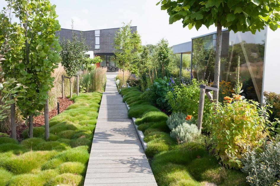 Gartenweg Anlegen Einfach