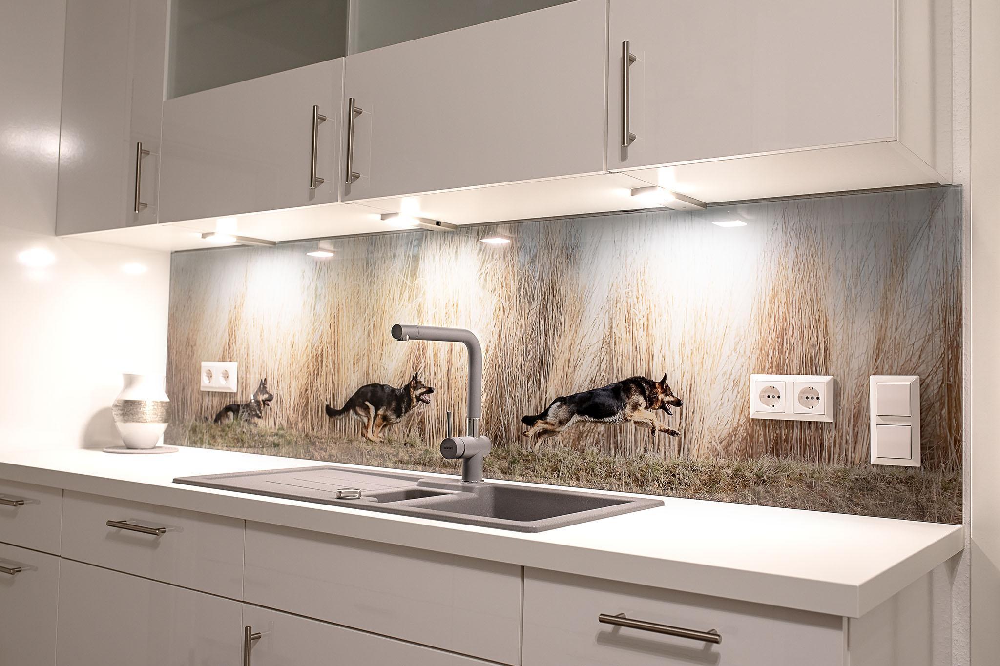 Glas Küchenrückwand Bilder