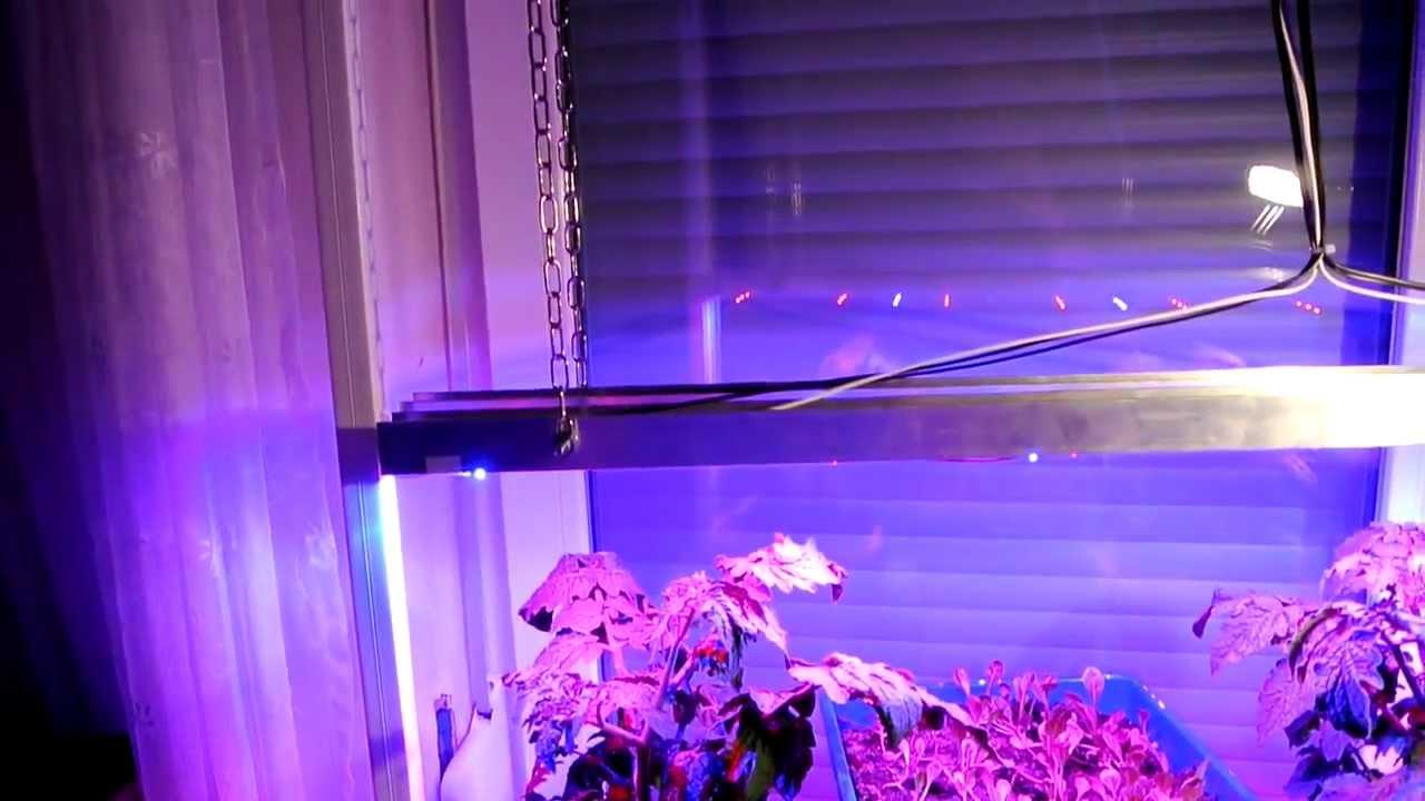 Grow Led Lampen