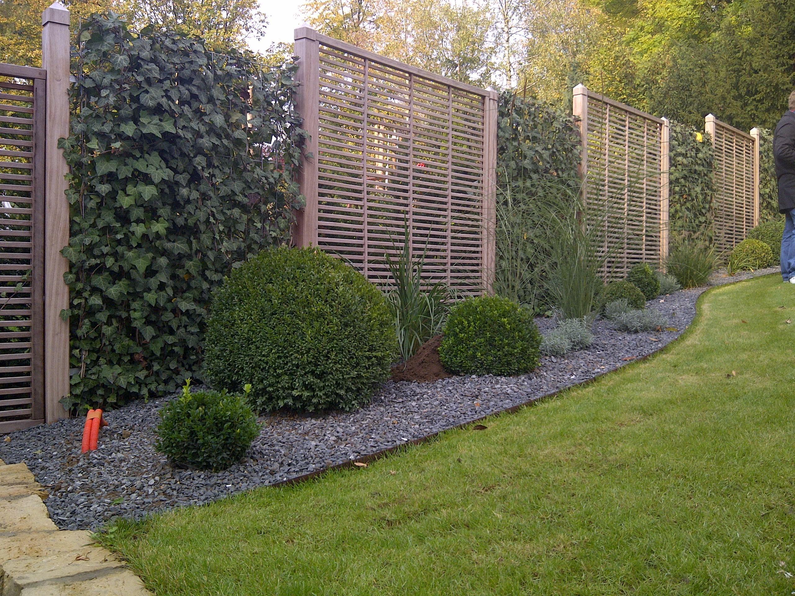 Grüner Zaun Sichtschutz Pflanzen
