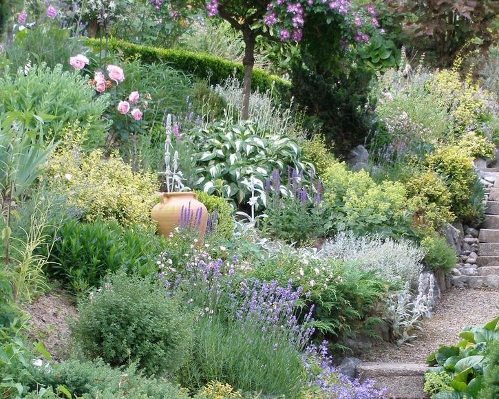 Hang Garten Bepflanzen