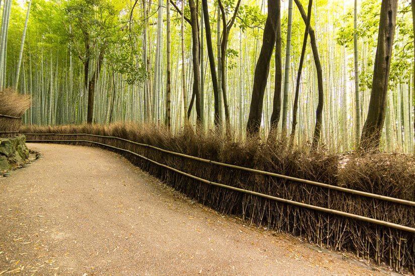 Holz Gartenzaun Modern