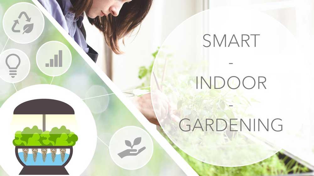 Indoor Garten Selber Bauen