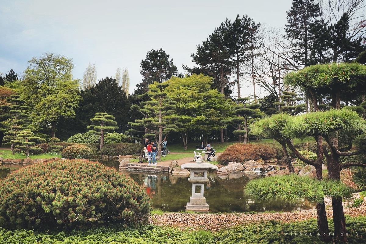 Japanischer Garten Düsseldorf Winter