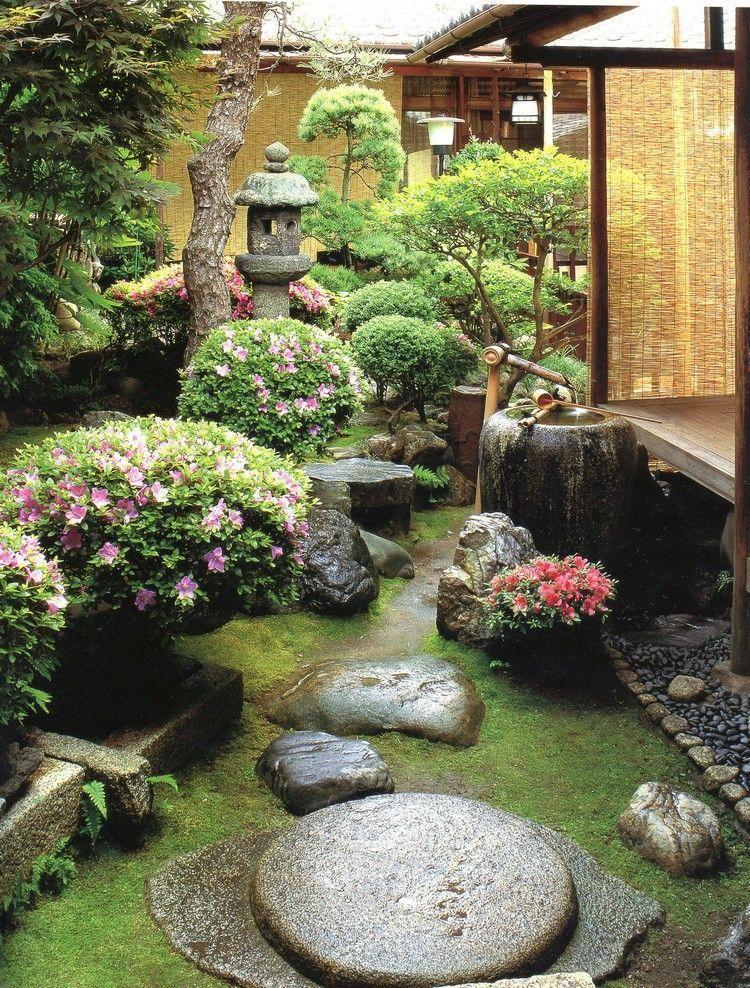 Japanischer Steingarten Pflanzen