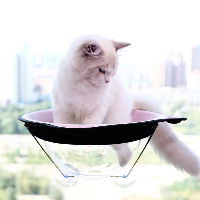 Katzen Hängematte Balkon
