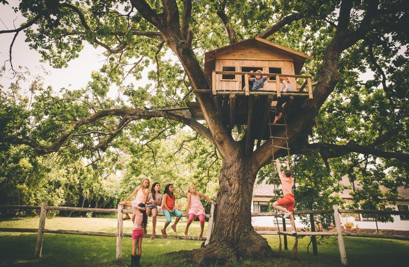 Kinderspielplatz Im Garten Anlegen