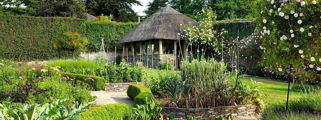 Kleine Sträucher Für Den Garten